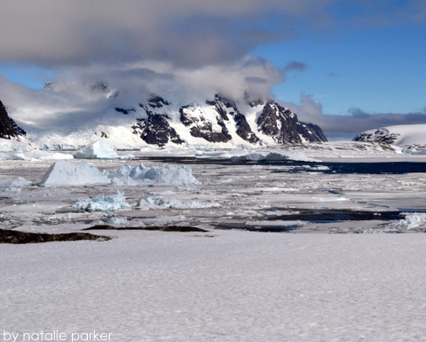 Iceberg Alley near Port Charcot, Antarctica by Natalie Parker