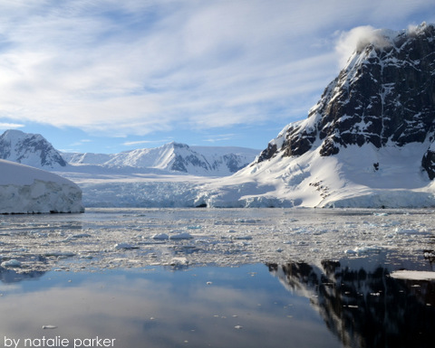 Antarctica by Natalie Parker 4