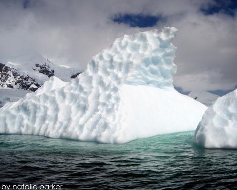 Antarctica by Natalie Parker 6