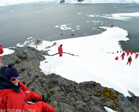 Antarctica by Natalie Parker 8