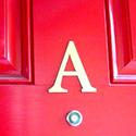 Custom House Letter